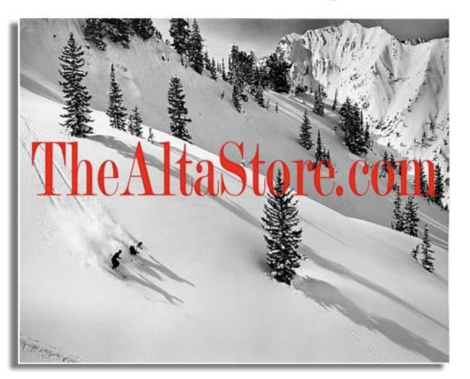 The Alta Store